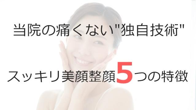 スッキリ美顔整顔5つの特徴