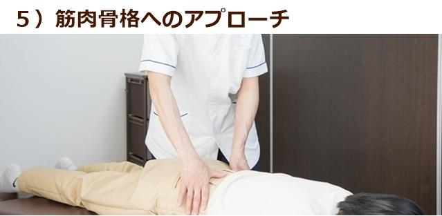 ⑤ 筋肉骨格へのアプローチ